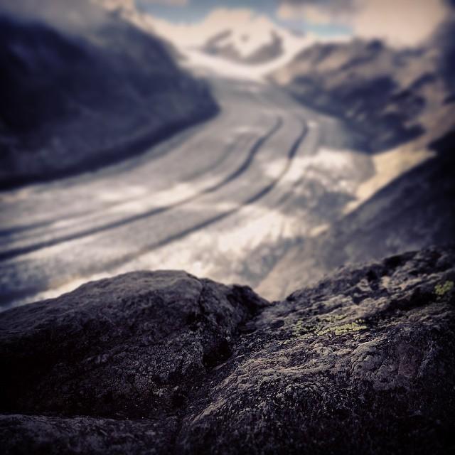 der Aletschgletscher